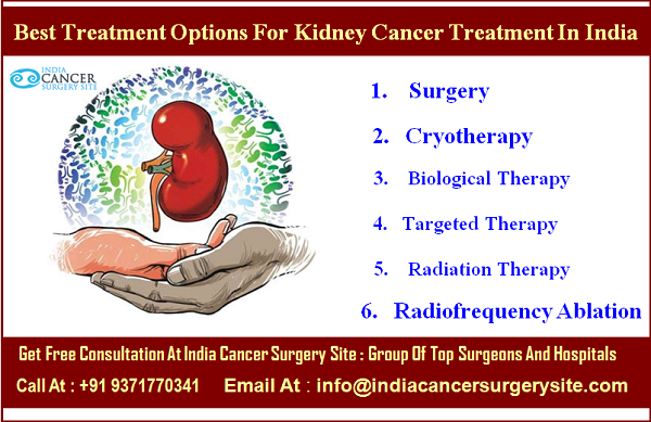 Best Treatment Options For Kidney Cancer Treatment In India India Cancer Surgery Site Blog